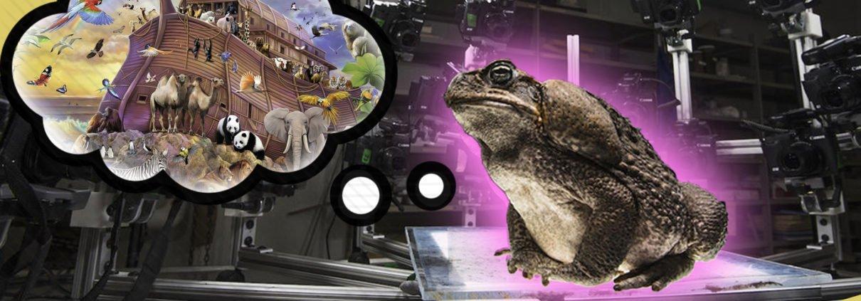 avec leur studio 3D mobile et leurs scanners 3D permettant de numériser toute espèce vivante, l'équipe de Digital Life veut conserver les espèces sans les détruire en créant des modèles 3D